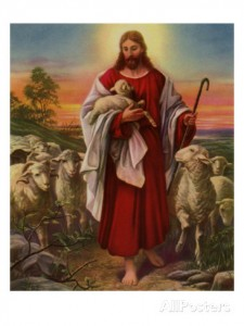 The Mother Sheep